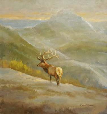 Tom Sander Majestic Elk 11x12 Oil on Board