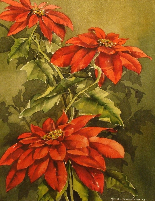 Marjorie Ransom Cummins Poinsettias 24x16 Watercolor