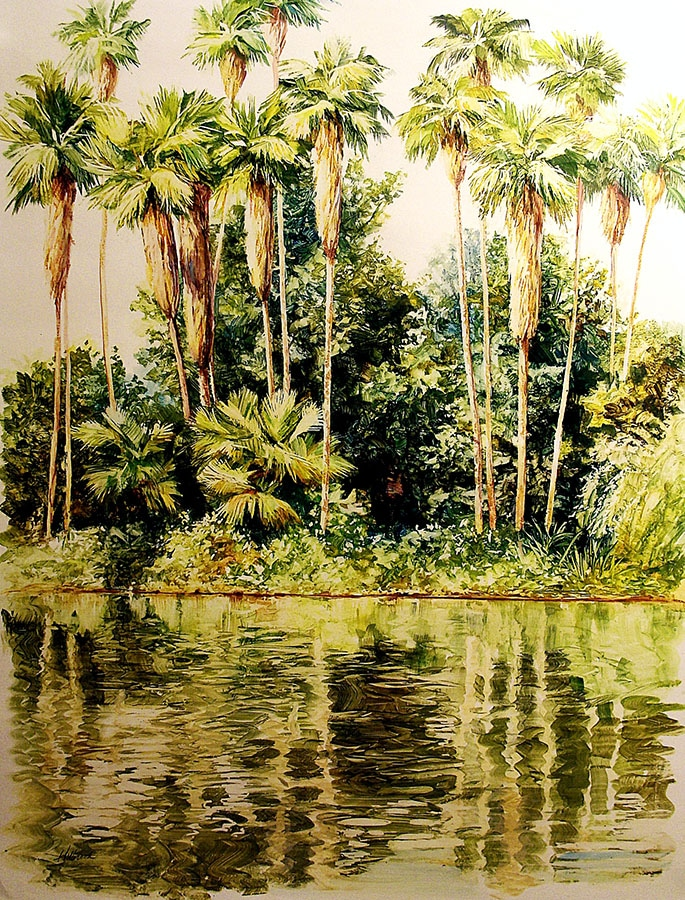 Joseph Holbrook Palm Grove 25x19 Acrylic on Paper