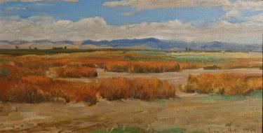 Ian McKibben White, Dry Marsh Grizzly Island California, 7x13 Oil on Board