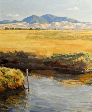 Ian McKibben White, Mount Diablo Grizzly Island, 13x11 Oil on Board