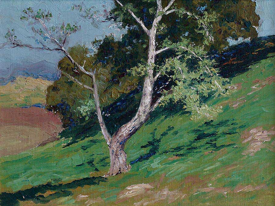 California plein air oil painting of green hillside, blue sky and sycamore trees by Charles Partridge Adams