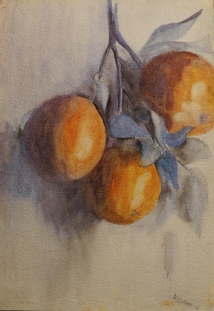 A. Welker Three Oranges 16x12 Watercolor