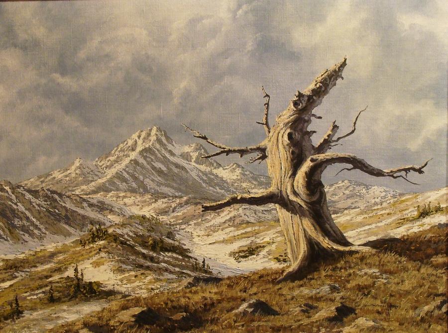 James Disney Weathered 20x24 Oil on Canvas