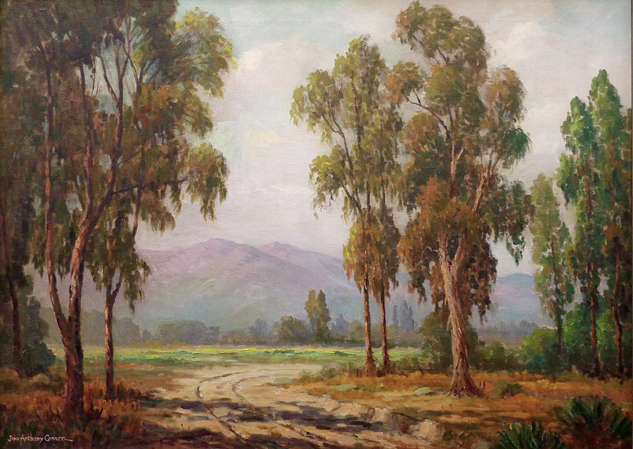 John Anthony Conner Eucalyptus Trees 26x36 Oil on Canvas