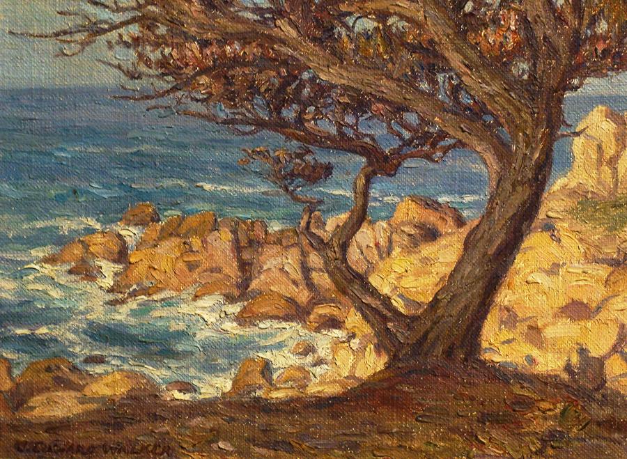 John Edward Walker Monterey Cypress 9x12 Oil on Canvas