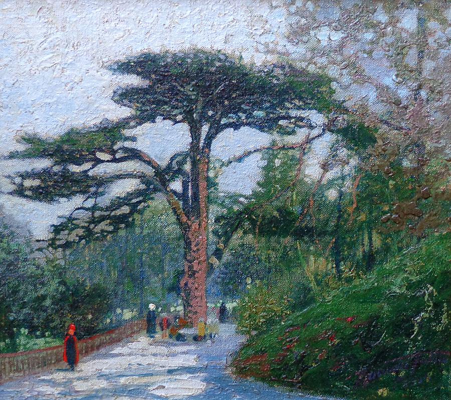 Macowin Tuttle Cedar of Lebanon Paris 12x14 Oil on Canvas