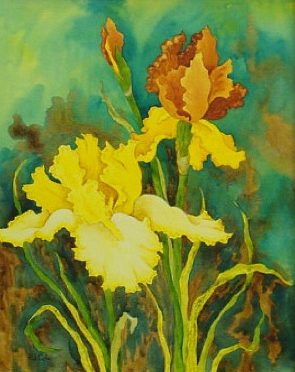 Irises by Pat Cole - Watercolor 24x18