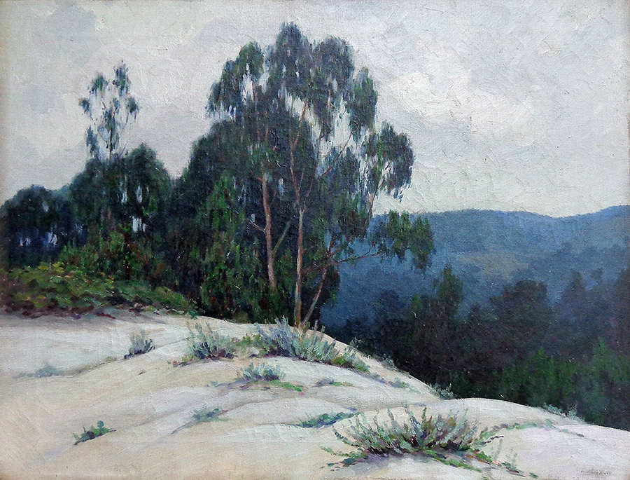 Francis Stillwell Dixon Eucalyptus near Carmel 20x26 Oil on Canvas