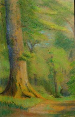 Fannie E Duvall Forest Path 20x13 Pastel