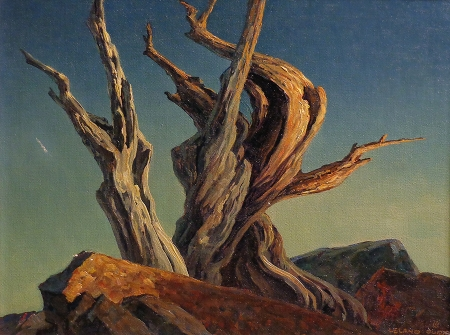 Leland S. Curtis Bristlecone Pine 12x16 Oil on Canvas Board