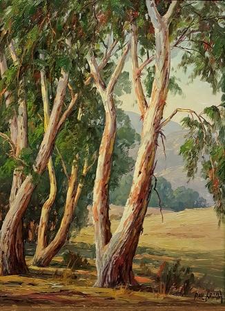 Paul Grimm Eucalyptus near Santa Barbara 16x21 Oil on Board
