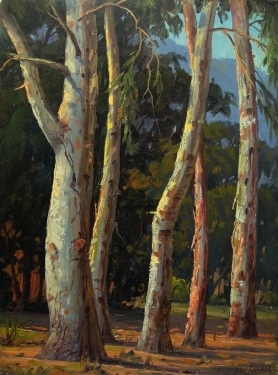 Paul Grimm Eucalyptus Grove 12x9 Oil on Board